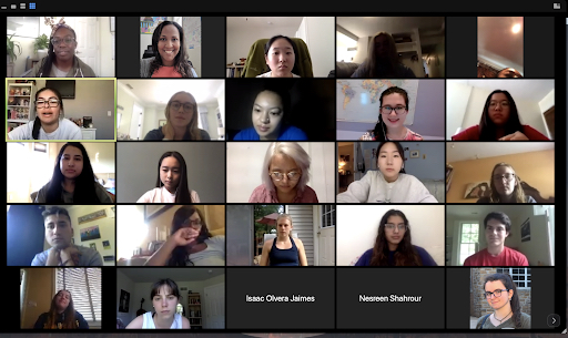 participants on Zoom call